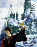 Harry Potter Artwork Harry Potter Artwork Harry and Hedwig